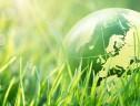 Você ou a sua empresa têm contribuído com atitudes sustentáveis?