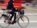 9% dos internautas brasileiros vão ao trabalho de bicicleta