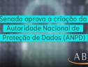 Senado aprova a criação da Autoridade Nacional de Proteção de Dados (ANPD)